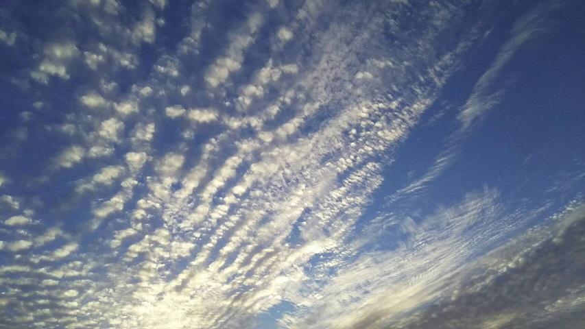 10月15日の夕方~の空は天界の白鳥が翼を広げたような、きれいな青と白の空でした5