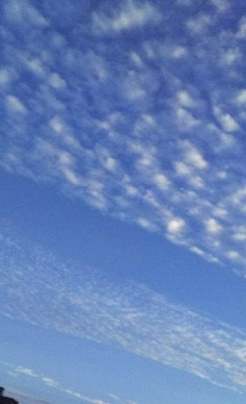 10月15日の夕方~の空は天界の白鳥が翼を広げたような、きれいな青と白の空でした6