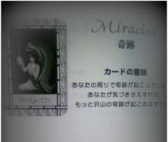 DSC_004111.jpg