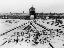 Auschwitz-1000x762.jpg