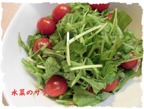 生野菜サラダ