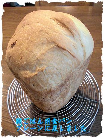 HB食パンです