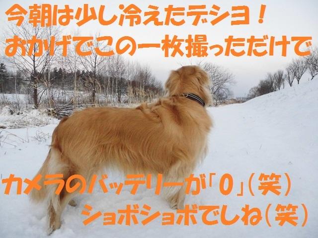 CIMG2857_P.jpg