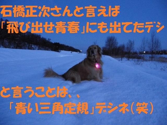 CIMG2967_P.jpg