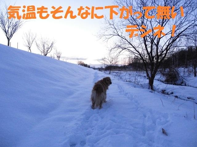 CIMG2983_P.jpg
