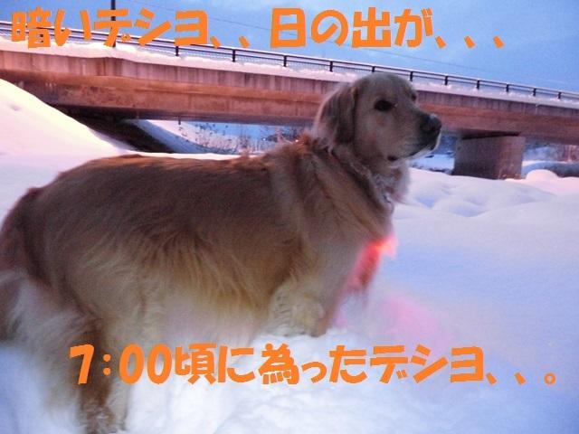 CIMG3005_P.jpg