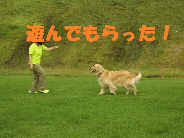 CIMG3219_P.jpg