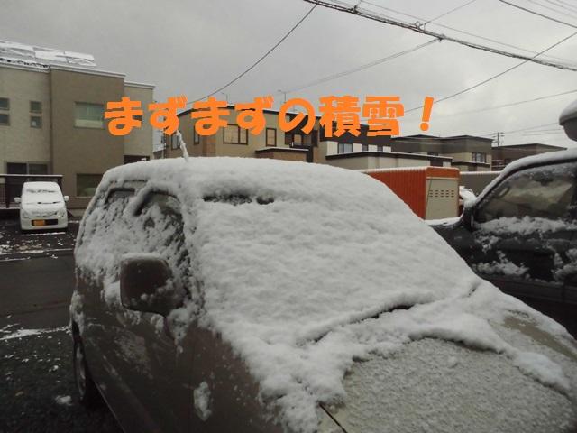 CIMG3551_P.jpg