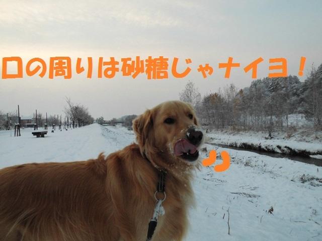 CIMG3638_P.jpg