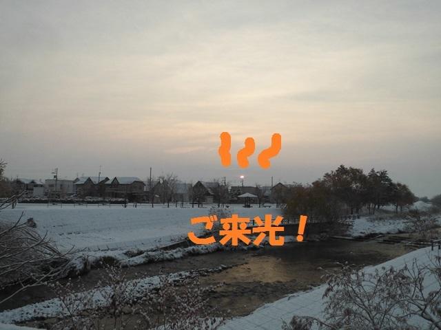 CIMG3643_P.jpg