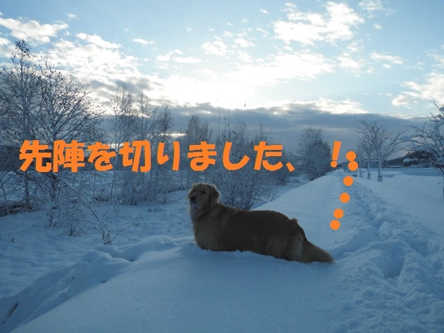 CIMG3661_P.jpg