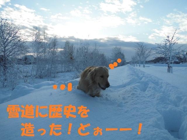 CIMG3662_P.jpg