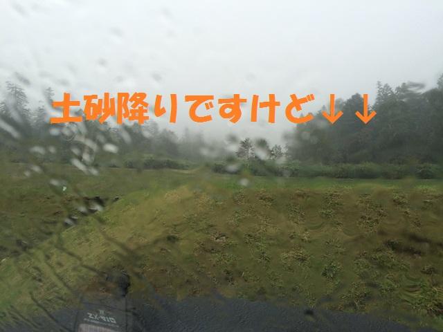 IMG_9173_P.jpg