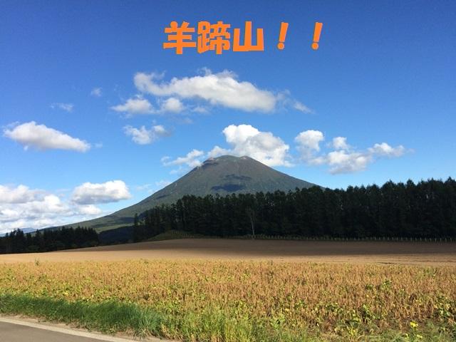 IMG_9307_P.jpg