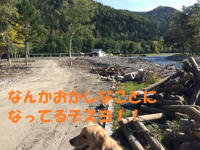 IMG_9588_P.jpg