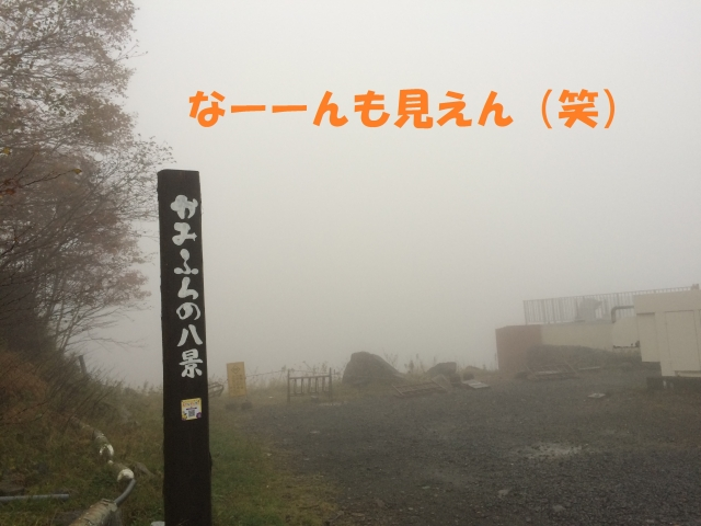 IMG_9652.jpg