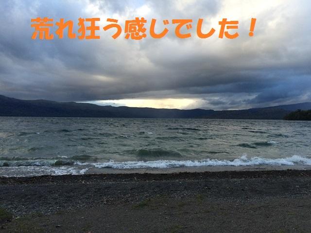 IMG_9765_P.jpg