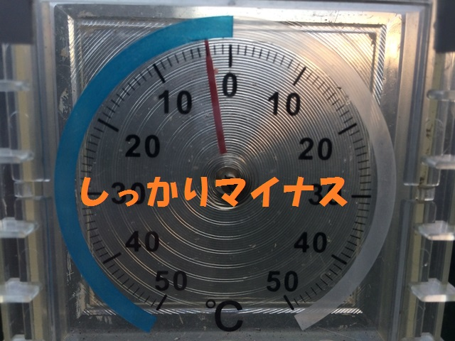 IMG_9795_P.jpg