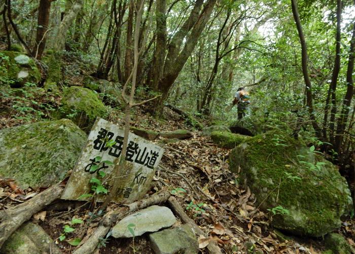 2016,5,8郡岳-3