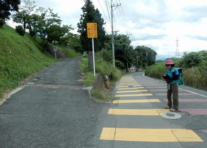 2016,7,3障子岳-36