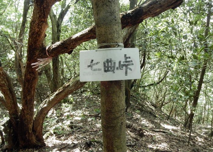 2016,7,3障子岳-21