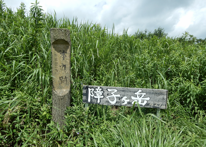 2016,7,3障子岳-15