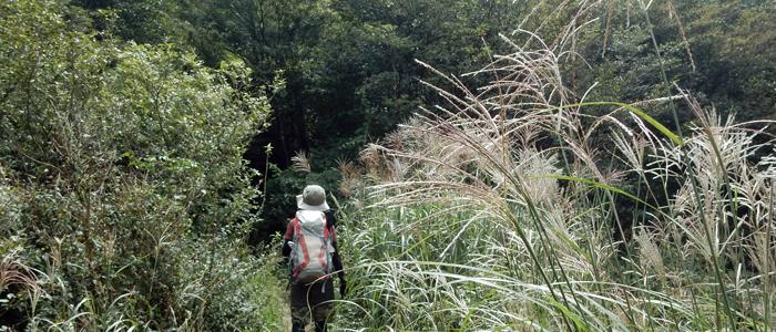 2016,9,10-三郡山10