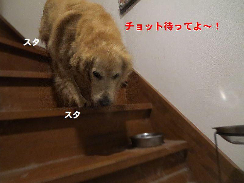 b_2016102303031435f.jpg