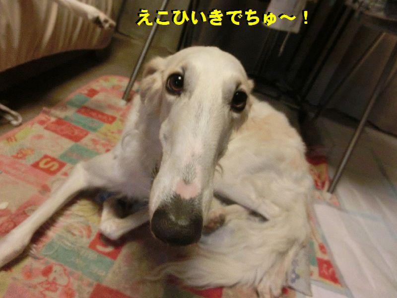 e_20161028194516302.jpg