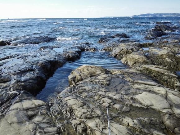 鴨川釣行2日目 漁港 釣り 海の写真