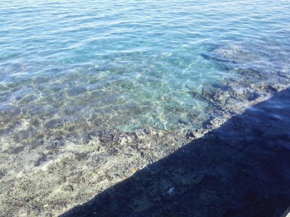 鴨川釣行3日目 内房ゴロタ 海の写真