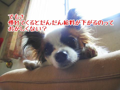 z_H5HzE8uormR5z1476798946_1476799195.jpg
