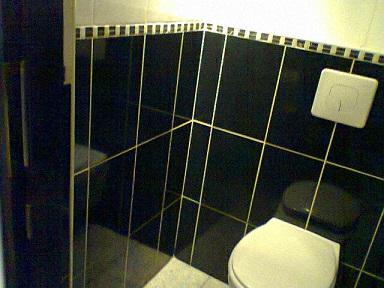 ポーランドのトイレ