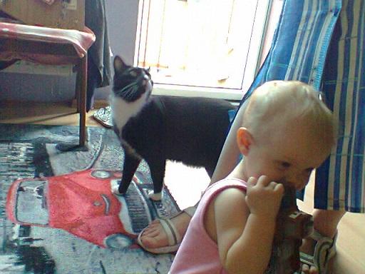 Marysia と 猫ちゃん
