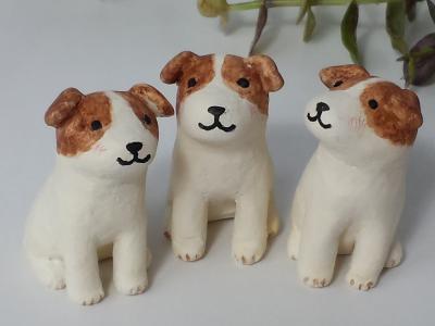 20160327犬