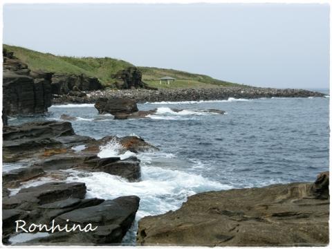 嵯峨野島2016⑨