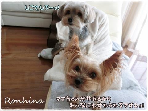 ボサ男&ボサ女②