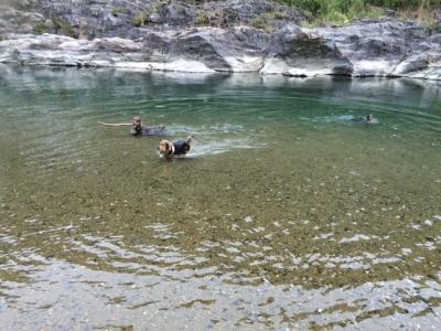 河原遊びです