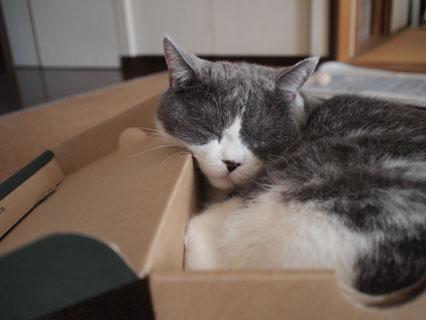 いいよね、この箱