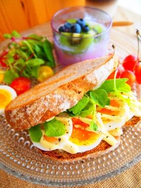 campagne sandwich