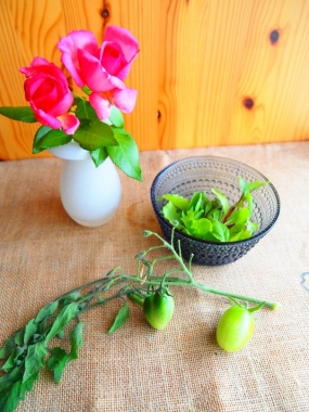 petit tomato & baby leaf