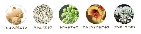 cleansing-ekisu.jpg