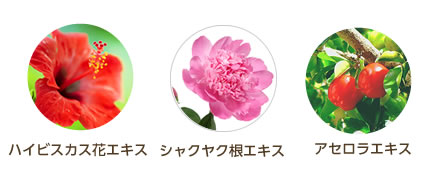 cleansing-ekisu02.jpg