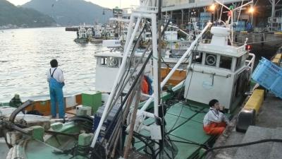 愛媛県漁連魚市場にて