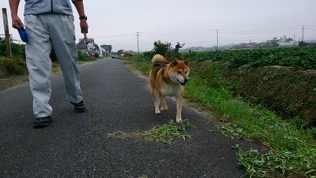 翔 2016.10.2-2