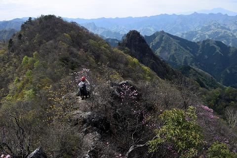 シラケ山P7
