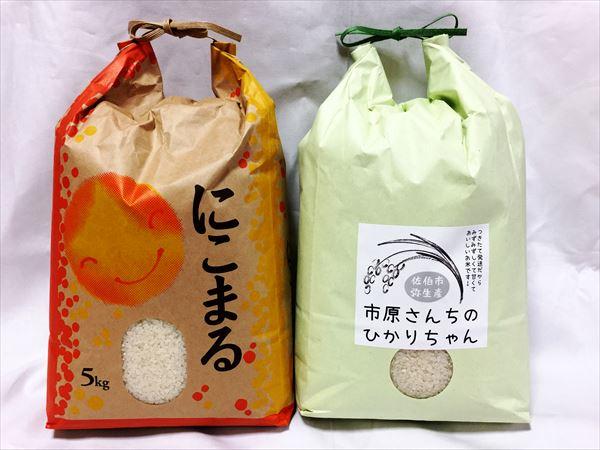 nikomaru-hikarichan_R.jpg