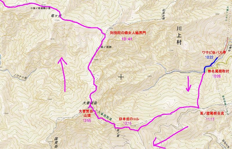 ワサビ谷map1101