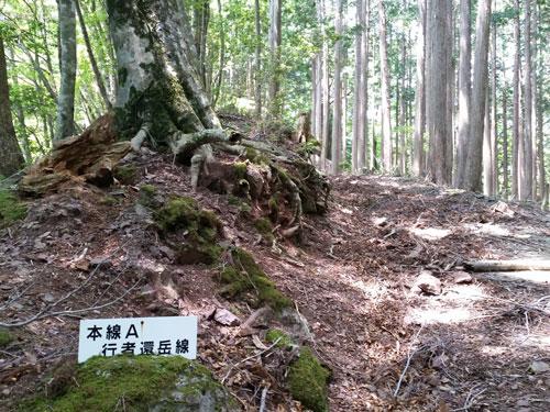 天ケ瀬120-302