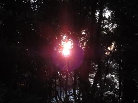 太陽の気配